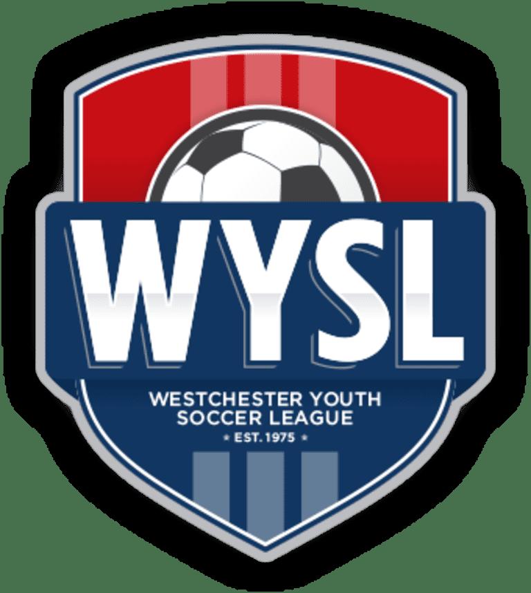 new wysl logo